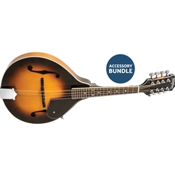 Washburn Mandolin Kit