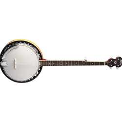 Washburn 5 String Banjo Mahogany Back and Sides